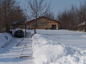 iarna-2010-038