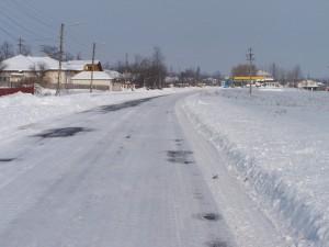 iarna-2010-039