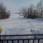 iarna-2010-050